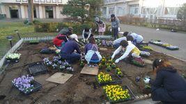 『秋の緑化活動』ボランティア募集のお知らせ