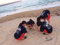 okinawa1601